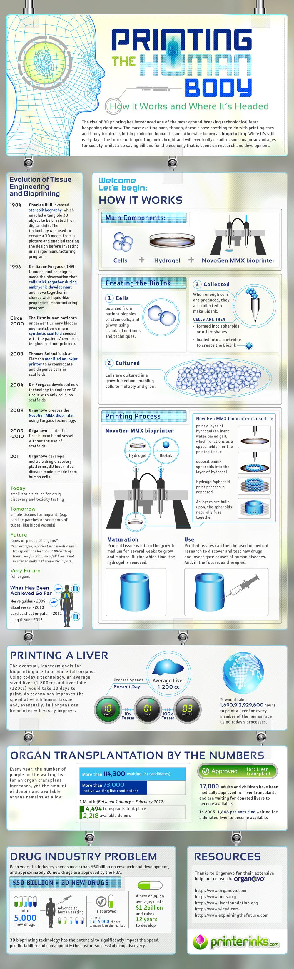 Köperdrucker Infografik