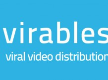 Der Viral Video Guide!